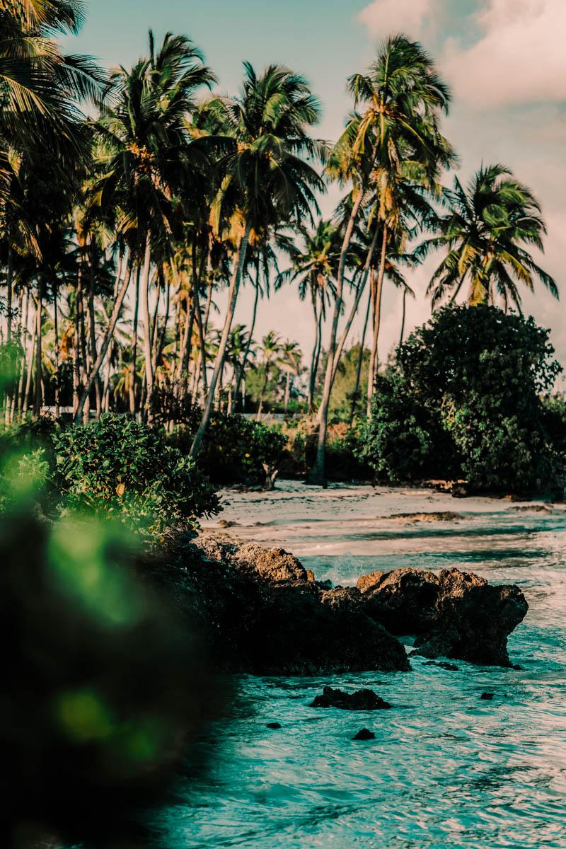 Preset Amazônia 09